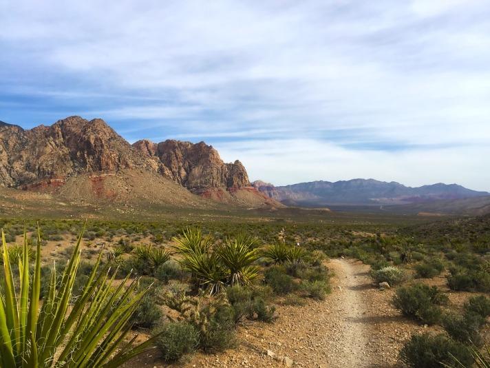 trail-1405898_960_720.jpg